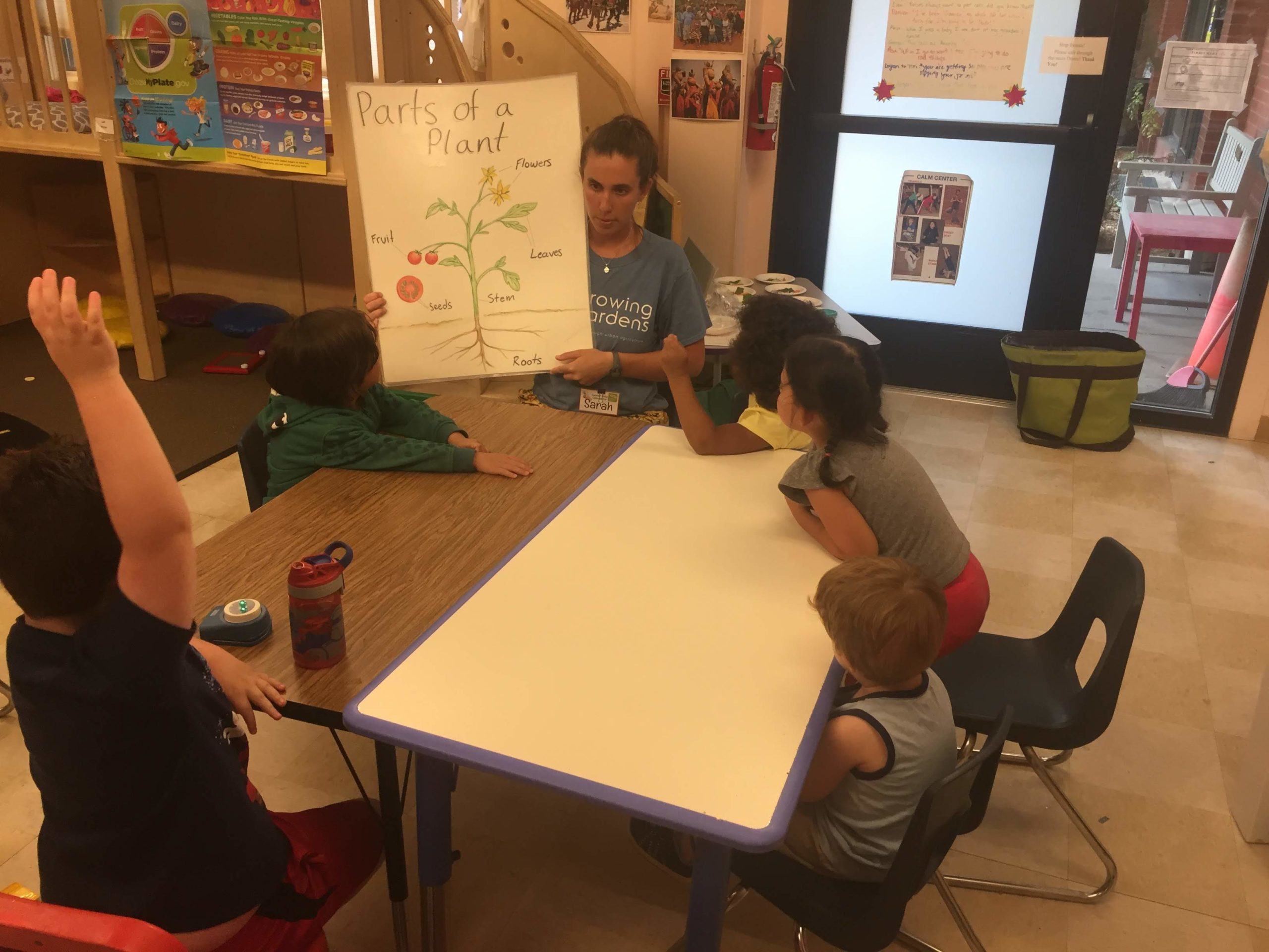 Classroom visit from growing gardens