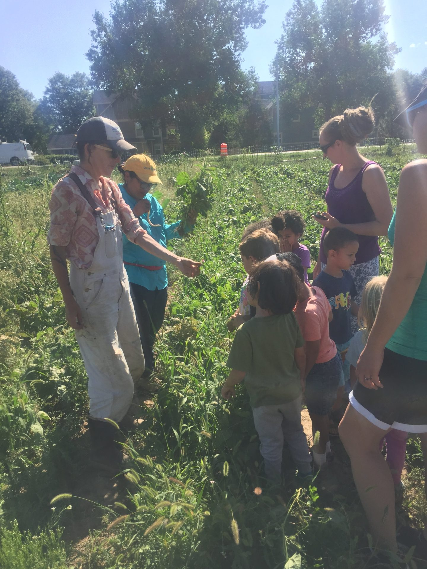 Children and teachers enjoy a field trip to a farm
