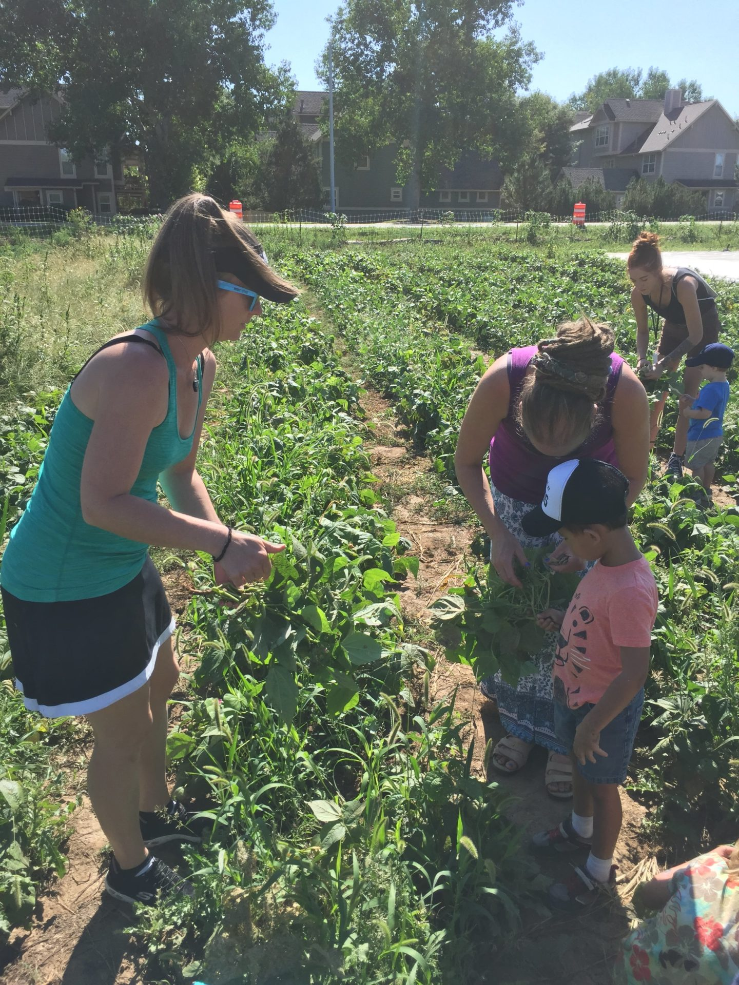 Children and teachers on a field trip to a farm